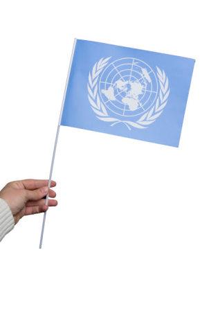 Pappersflagga, FN 27x20cm