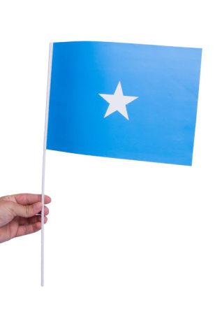 Pappersflagga, Somalia 27x20cm