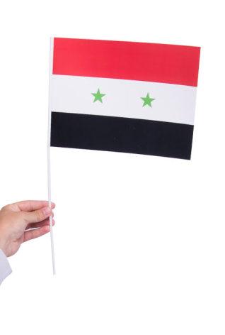 Pappersflagga, Syrien 27x20cm