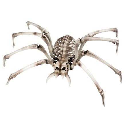 Props, skelett spindel 82x48 cm